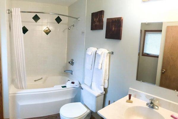 giants-ridge-villas-bathroom