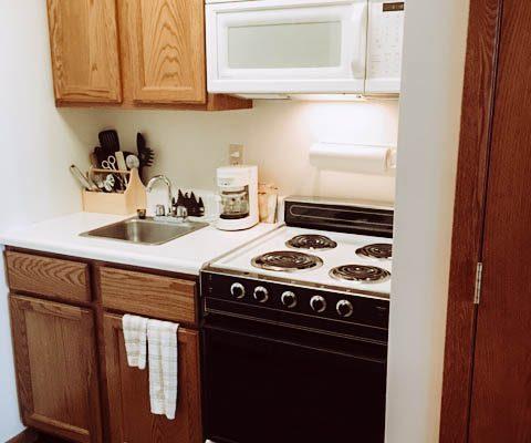 giants-ridge-villas-kitchen5